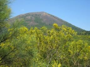 National Park of Vesuvio